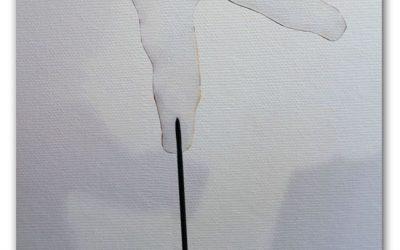 Optique: deux artistes expérimentent la peinture d'invisibilité